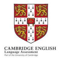 cam-assessment-logo_nomensa
